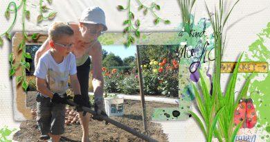 Dans le jardin de Mamie Jacqueline - Kit Jack de Dawn Inskip