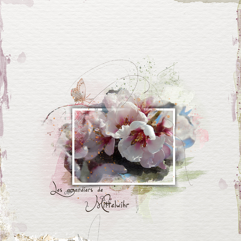 Une page aquarelle «out of the box» frames