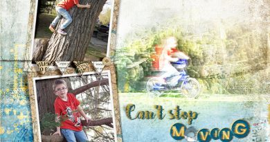 Can't stop moving - 52 inspirations challenge - Clin d'oeil design