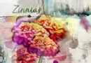 Zinnias - Anna Color challenge