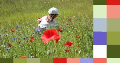 Tuto créer un nuancier dans photoshop ou PSE à partir d'une photo