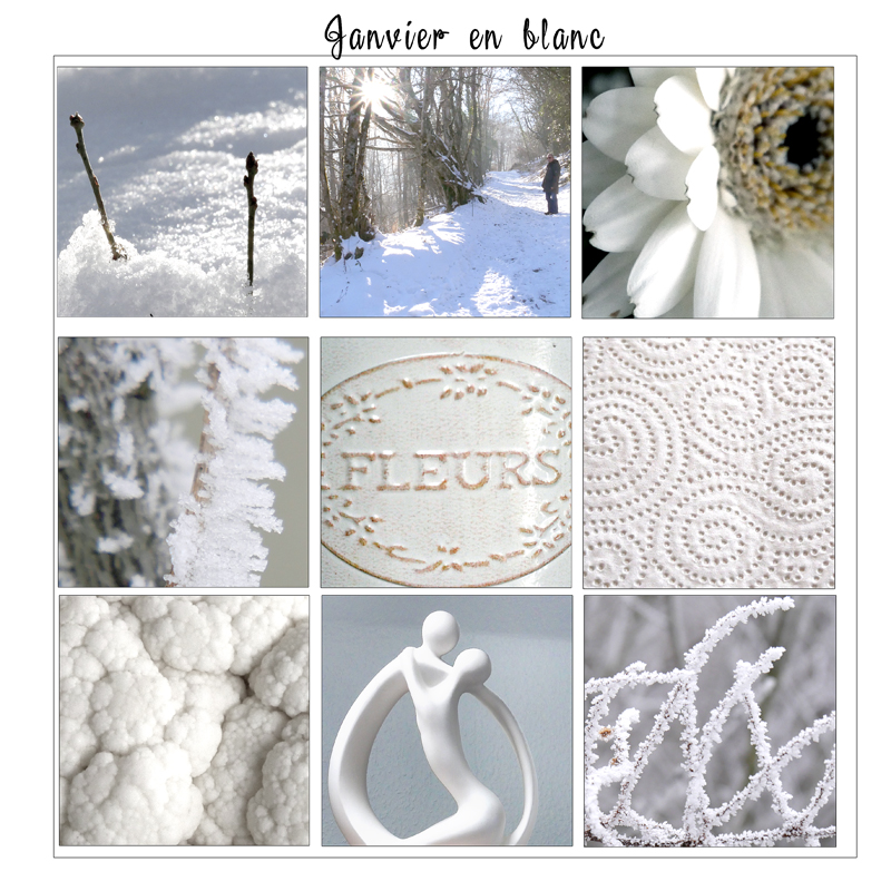 Janvier en blanc challenge photo publiscrap