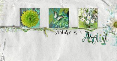 Nature is an Artist Urban Garden Clin d'oeil design