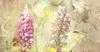 Les orchidées du Lilental - Anna Aspnes Color challenge