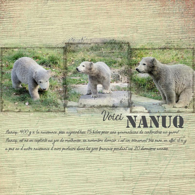 Nanuq, Kit collab escale sauvage clin d'oeil design