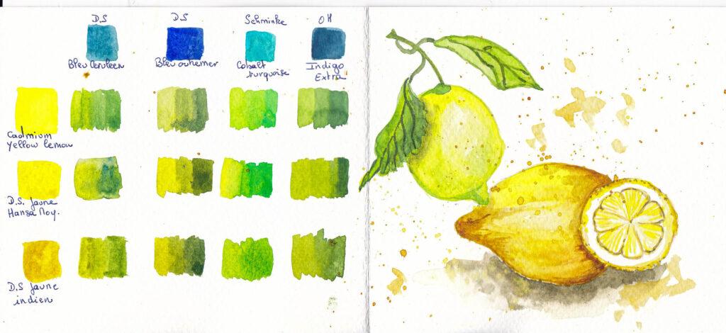 Aquarelle : étude des couleurs