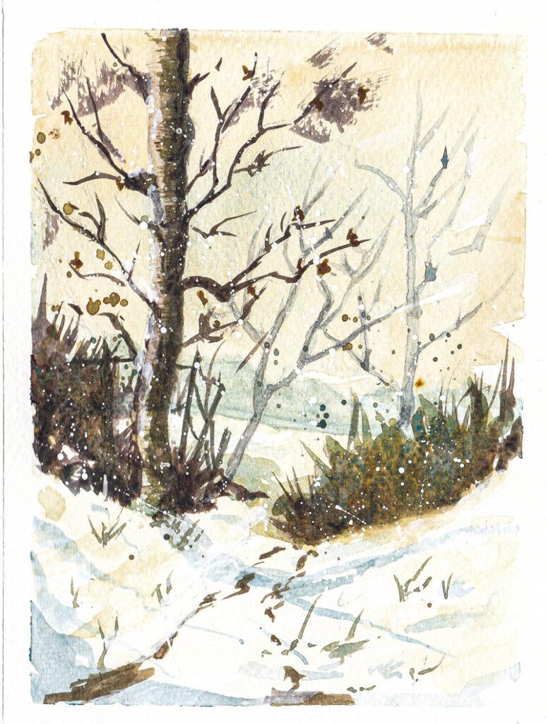 Cartes de Noël - Paysage